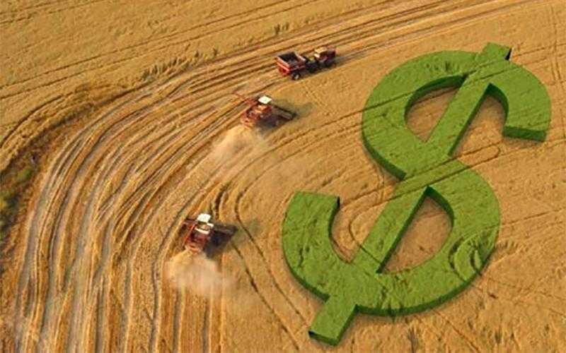 Começa o prazo para a entrega da Declaração do Imposto sobre a Propriedade Rural